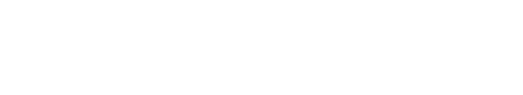 Stable Lane Digital Hub Logo White